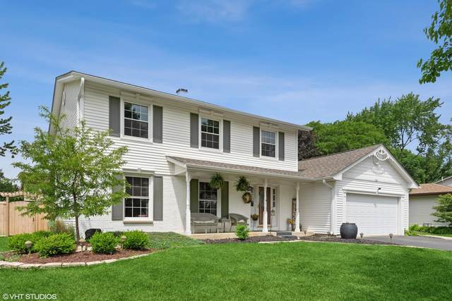 706 Michigan Lane, Elk Grove Village, IL 60007 (MLS #11131935) :: Helen Oliveri Real Estate