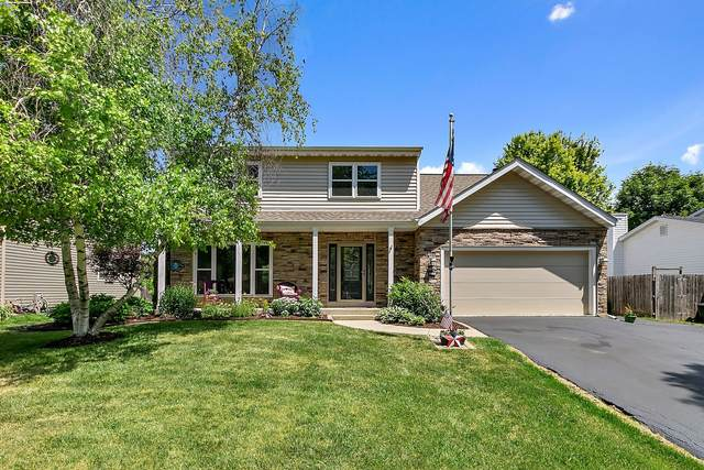 2120 Country Lakes Drive, Naperville, IL 60563 (MLS #11132559) :: O'Neil Property Group
