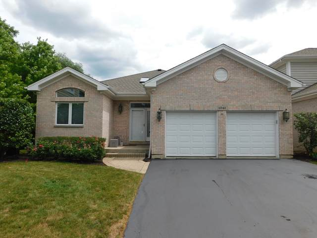 1041 Sanctuary Court, Vernon Hills, IL 60061 (MLS #11132647) :: Carolyn and Hillary Homes
