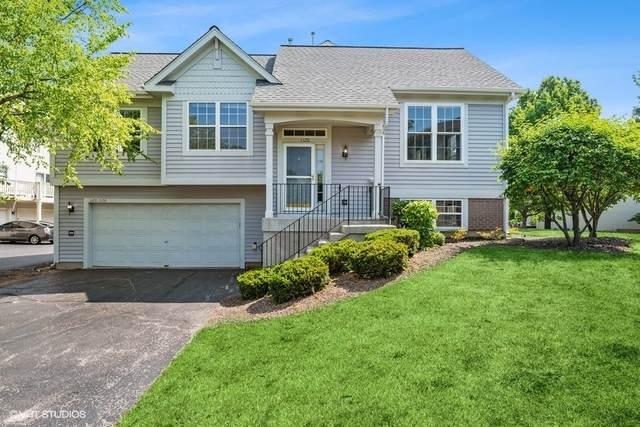 1120 Cambridge Drive, Grayslake, IL 60030 (MLS #11132675) :: Helen Oliveri Real Estate