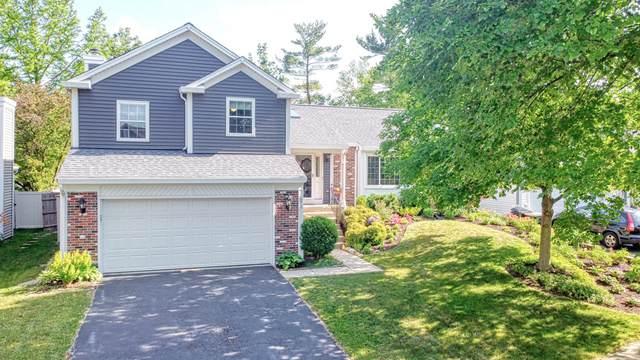 2S571 River Oaks Drive, Warrenville, IL 60555 (MLS #11132759) :: Jacqui Miller Homes