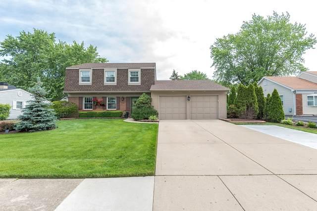 227 Compton Lane, Schaumburg, IL 60194 (MLS #11133091) :: Carolyn and Hillary Homes