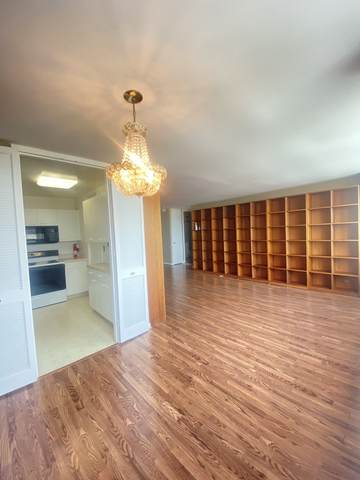 1700 E 56th Street #1805, Chicago, IL 60637 (MLS #11133209) :: Carolyn and Hillary Homes