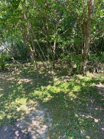 22 Clearwater, Putnam, IL 61560 (MLS #11133366) :: O'Neil Property Group