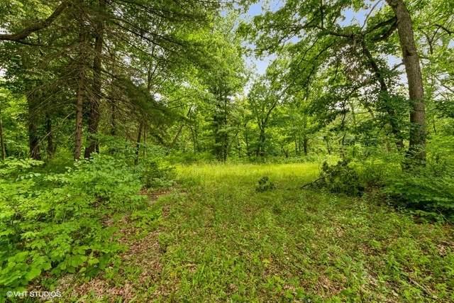 11702 German Church Road, Burr Ridge, IL 60527 (MLS #11133501) :: The Wexler Group at Keller Williams Preferred Realty