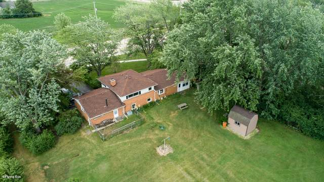 15800 108th Avenue, Orland Park, IL 60467 (MLS #11133758) :: Schoon Family Group