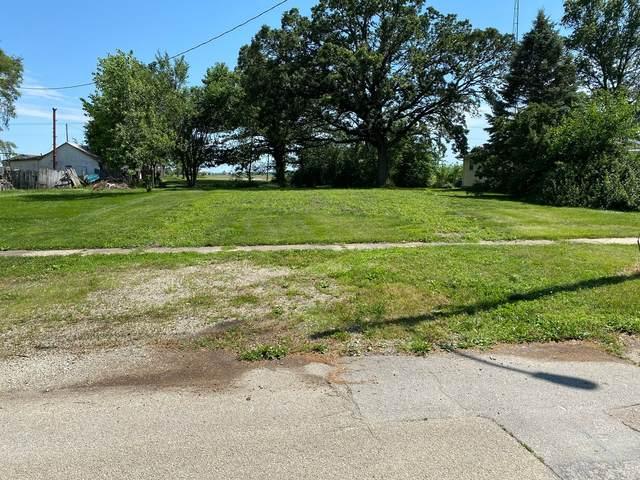 115 W Maple Street, Roberts, IL 60962 (MLS #11134008) :: The Dena Furlow Team - Keller Williams Realty