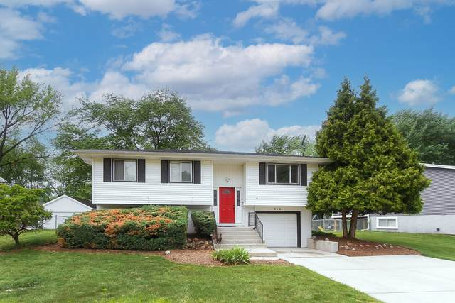 916 S Braintree Drive, Schaumburg, IL 60193 (MLS #11134051) :: John Lyons Real Estate