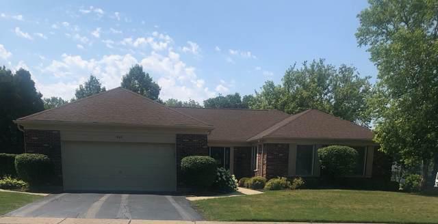 948 S Harvard Drive, Palatine, IL 60067 (MLS #11134239) :: Jacqui Miller Homes