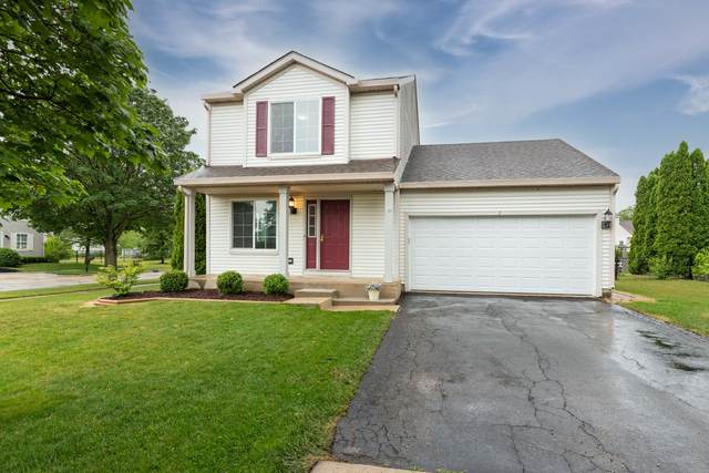 1 Frederick Court, South Elgin, IL 60177 (MLS #11134312) :: Suburban Life Realty