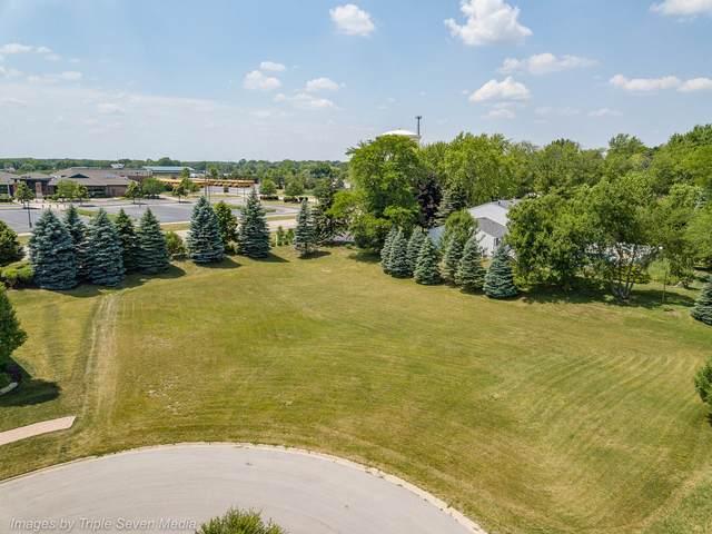 16226 Syd Creek Drive, Homer Glen, IL 60491 (MLS #11134777) :: The Wexler Group at Keller Williams Preferred Realty