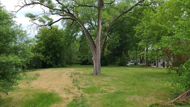 2932 N Schoenbeck Road, Arlington Heights, IL 60004 (MLS #11134985) :: John Lyons Real Estate