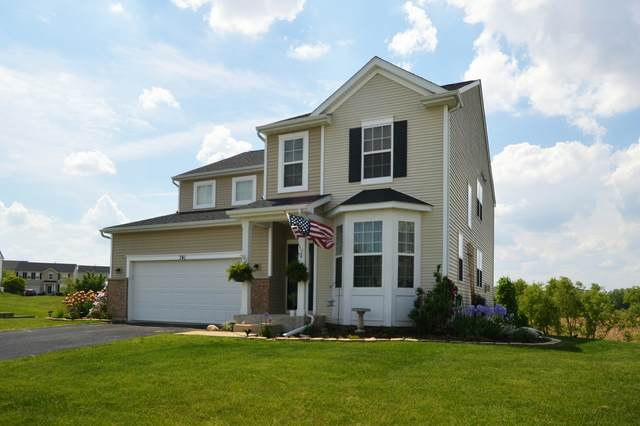 741 Avalon Way, Minooka, IL 60447 (MLS #11135263) :: Suburban Life Realty