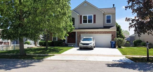 135 Troutman Drive, Bartlett, IL 60103 (MLS #11135319) :: RE/MAX Next