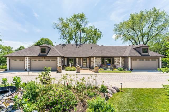 1430 Blackhawk Drive, Schaumburg, IL 60193 (MLS #11135356) :: John Lyons Real Estate