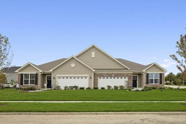 25556 W Springview Drive, Plainfield, IL 60586 (MLS #11135413) :: O'Neil Property Group