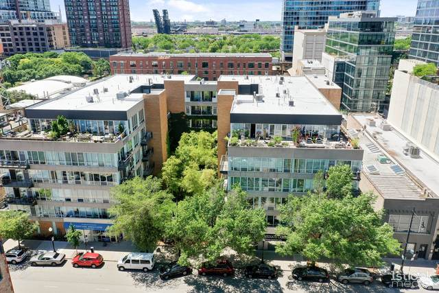 1430 S Michigan Avenue #506, Chicago, IL 60605 (MLS #11135443) :: John Lyons Real Estate