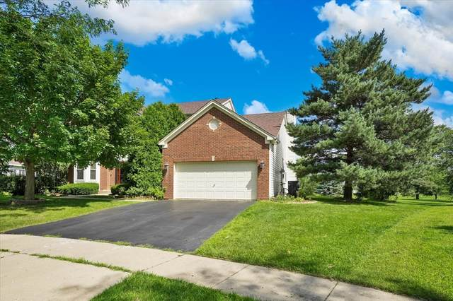 231 Summerdale Lane, Algonquin, IL 60102 (MLS #11135489) :: The Wexler Group at Keller Williams Preferred Realty