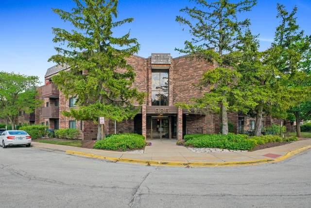 925 Spring Hill Drive #312, Northbrook, IL 60062 (MLS #11135687) :: John Lyons Real Estate