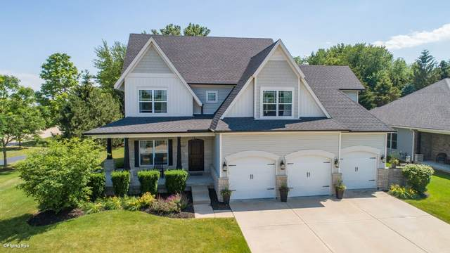 26001 W Stewart Ridge Drive, Plainfield, IL 60585 (MLS #11135802) :: O'Neil Property Group