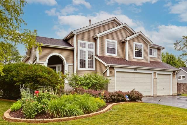 2213 Apple Hill Lane, Buffalo Grove, IL 60089 (MLS #11136565) :: Suburban Life Realty