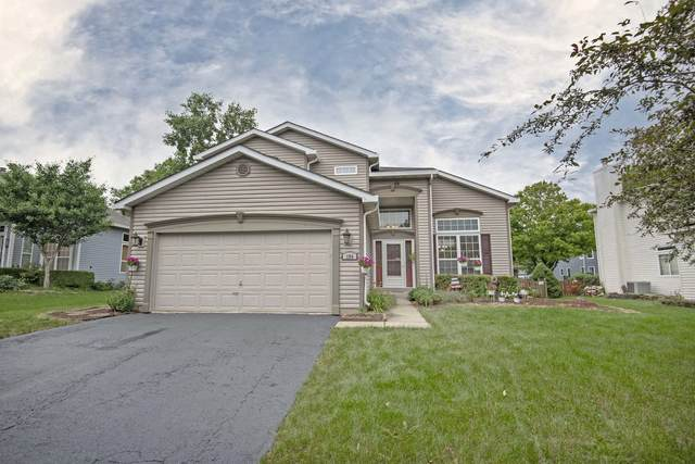 194 Sparrow Lane, Bolingbrook, IL 60490 (MLS #11136768) :: Suburban Life Realty