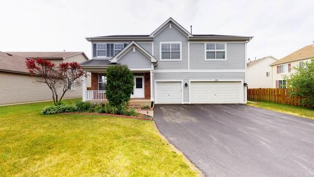529 W Dalton Drive, Round Lake, IL 60073 (MLS #11136920) :: Jacqui Miller Homes