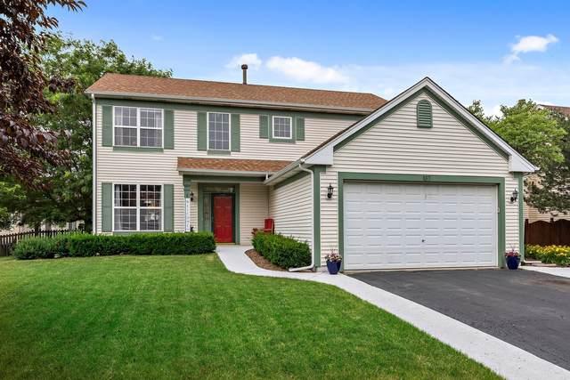 137 Ash Drive, Bolingbrook, IL 60490 (MLS #11137021) :: Suburban Life Realty
