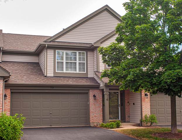 713 Sycamore Court, Lindenhurst, IL 60046 (MLS #11137272) :: O'Neil Property Group