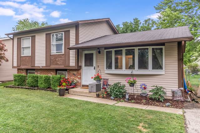 836 Tamms Lane, Bolingbrook, IL 60440 (MLS #11137560) :: O'Neil Property Group