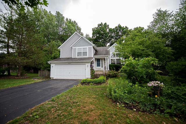 1337 Amherst Court, Grayslake, IL 60030 (MLS #11137632) :: Suburban Life Realty