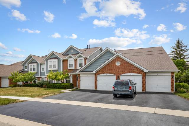 299 Ashbury Court #8, Roselle, IL 60172 (MLS #11137813) :: O'Neil Property Group