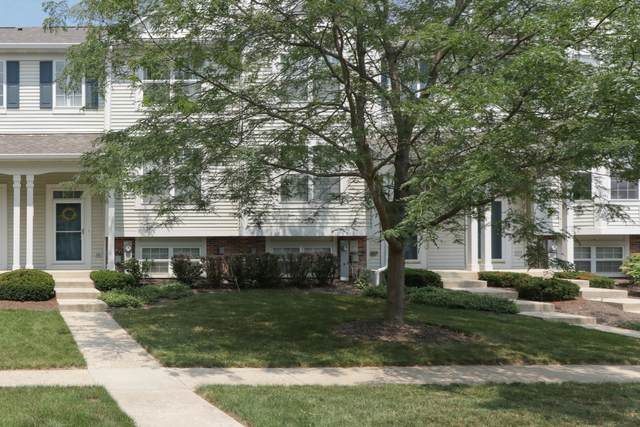 308 Terra Springs Circle, Volo, IL 60020 (MLS #11137815) :: John Lyons Real Estate