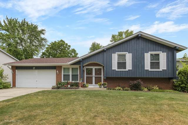 343 Gale Street, Elgin, IL 60123 (MLS #11138041) :: Jacqui Miller Homes