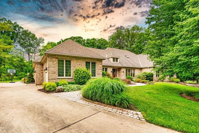 944 N Butternut Circle, Frankfort, IL 60423 (MLS #11138164) :: Jacqui Miller Homes