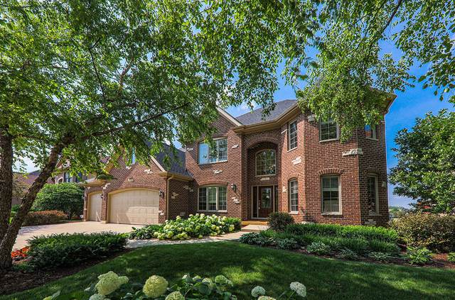 4043 Juneberry Road, Naperville, IL 60564 (MLS #11138268) :: O'Neil Property Group