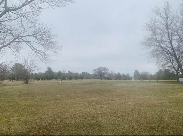 1430 Country Club Lane, Loda, IL 60948 (MLS #11138650) :: The Wexler Group at Keller Williams Preferred Realty