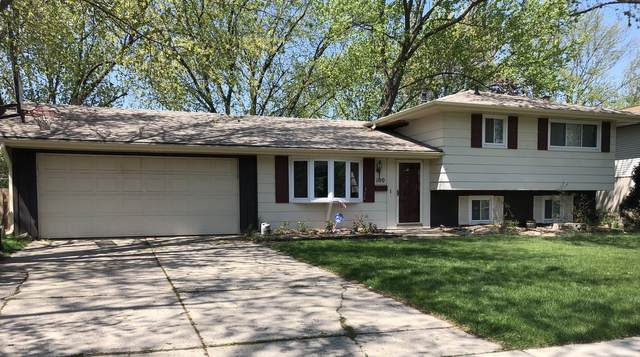 100 Samoset Lane, Schaumburg, IL 60193 (MLS #11138786) :: Jacqui Miller Homes