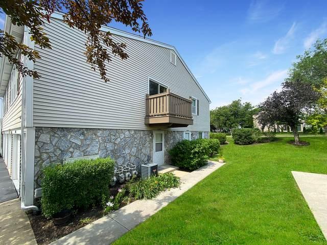 1046 Glouchester Drive #1046, Schaumburg, IL 60193 (MLS #11138968) :: O'Neil Property Group