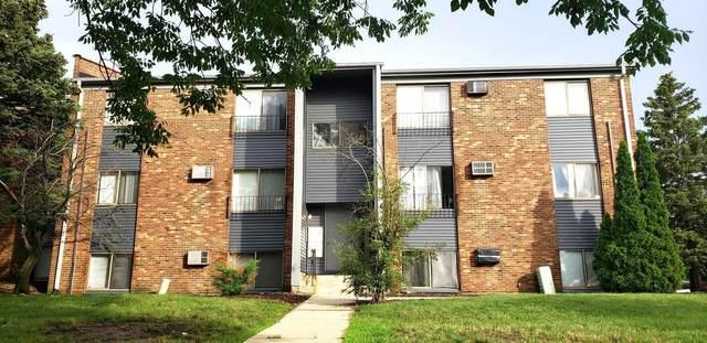 264 Canterbury Lane #5, Bolingbrook, IL 60440 (MLS #11139036) :: The Dena Furlow Team - Keller Williams Realty