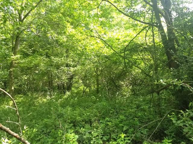 Lot 1536 Lake Wildwood Drive, Varna, IL 61375 (MLS #11139088) :: Lewke Partners - Keller Williams Success Realty