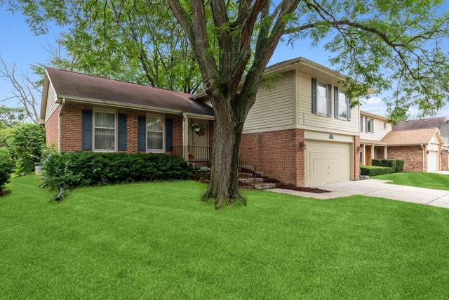 601 Sycamore Lane, Wheeling, IL 60090 (MLS #11139277) :: Suburban Life Realty