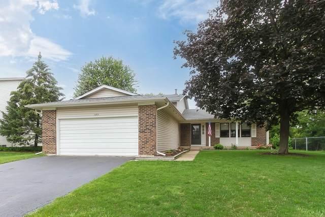 1063 Tennessee Lane, Elk Grove Village, IL 60007 (MLS #11139313) :: O'Neil Property Group