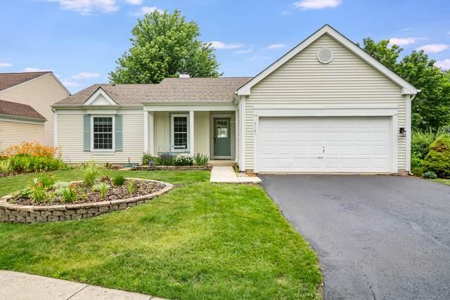 3161 Village Green Drive, Aurora, IL 60504 (MLS #11139922) :: Suburban Life Realty