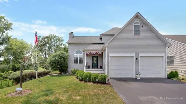 1290 Savanna Lane, Woodstock, IL 60098 (MLS #11140169) :: O'Neil Property Group