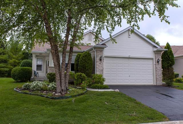 481 Enfield Lane, Grayslake, IL 60030 (MLS #11140183) :: Jacqui Miller Homes