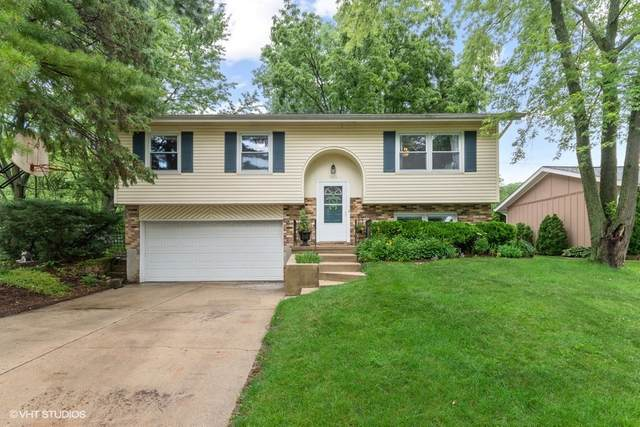 1614 Lucylle Avenue, St. Charles, IL 60174 (MLS #11140605) :: O'Neil Property Group