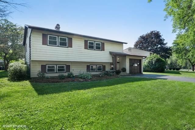 424 N Idlewild Avenue, Mundelein, IL 60060 (MLS #11140760) :: Jacqui Miller Homes