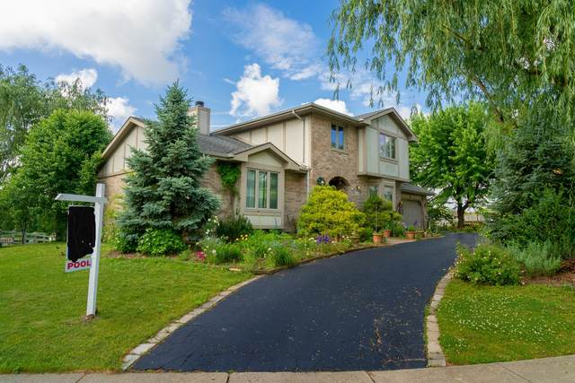 12263 Lakeview Trail, Homer Glen, IL 60491 (MLS #11140904) :: Suburban Life Realty
