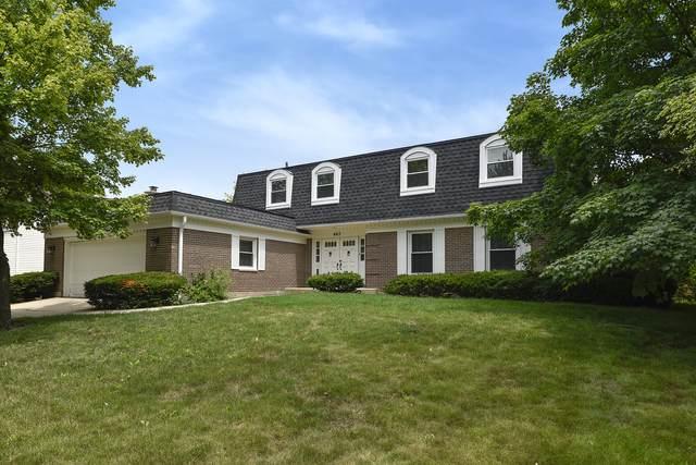 663 S Mallard Drive, Palatine, IL 60067 (MLS #11141090) :: Jacqui Miller Homes